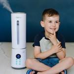 Humidificadores e purificadores de ar